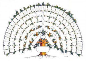 L'arbre GéniWal 7 générations couleurs