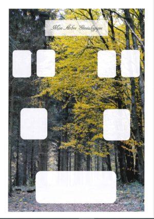 L'arbre GéniWal 3 générations – Spécial enfant – décor forêt