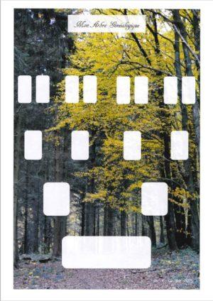 L'arbre GéniWal 4 générations Spécial enfant – décor forêt (Copie)